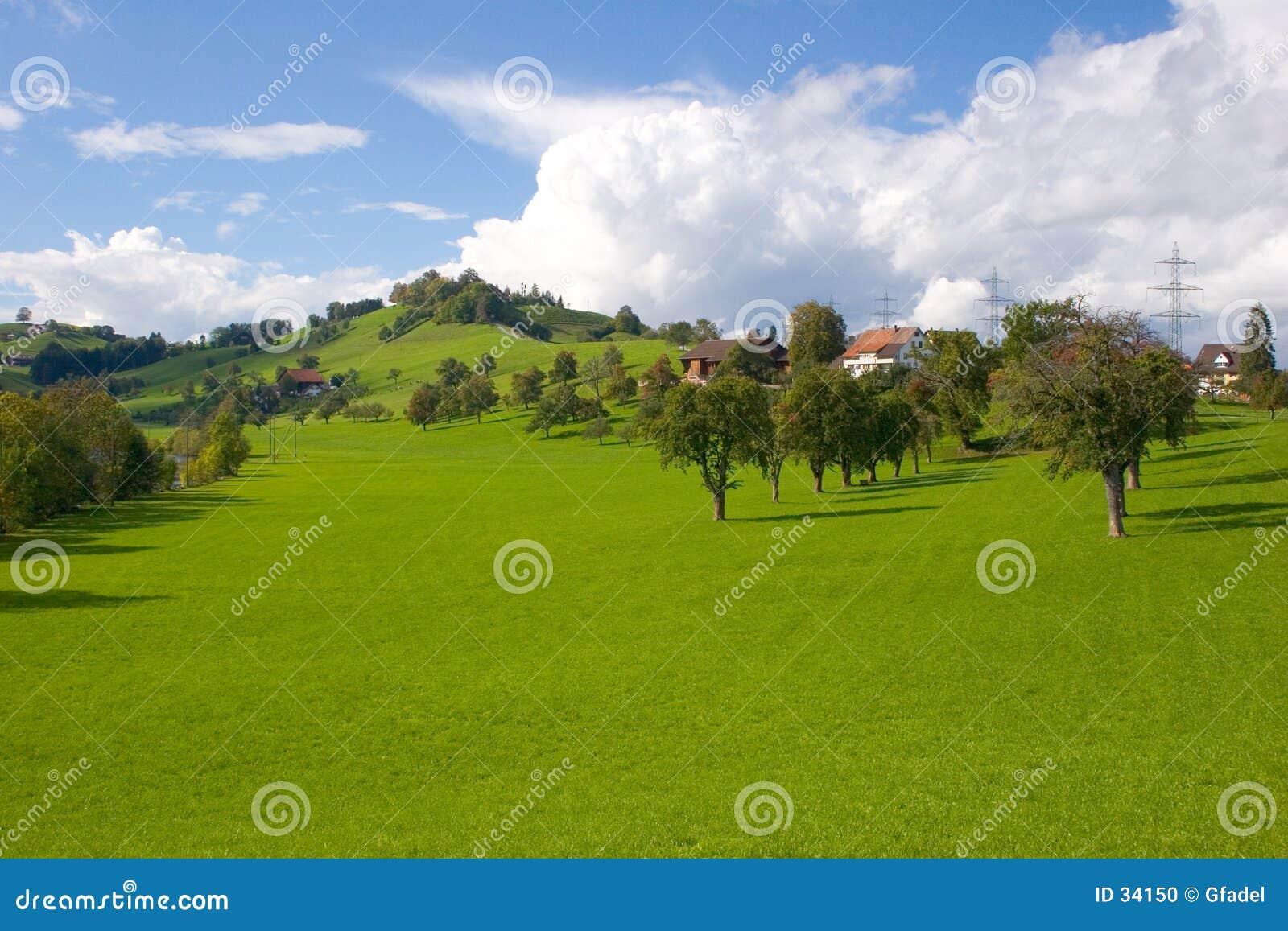 Szwajcarzy krajobrazu