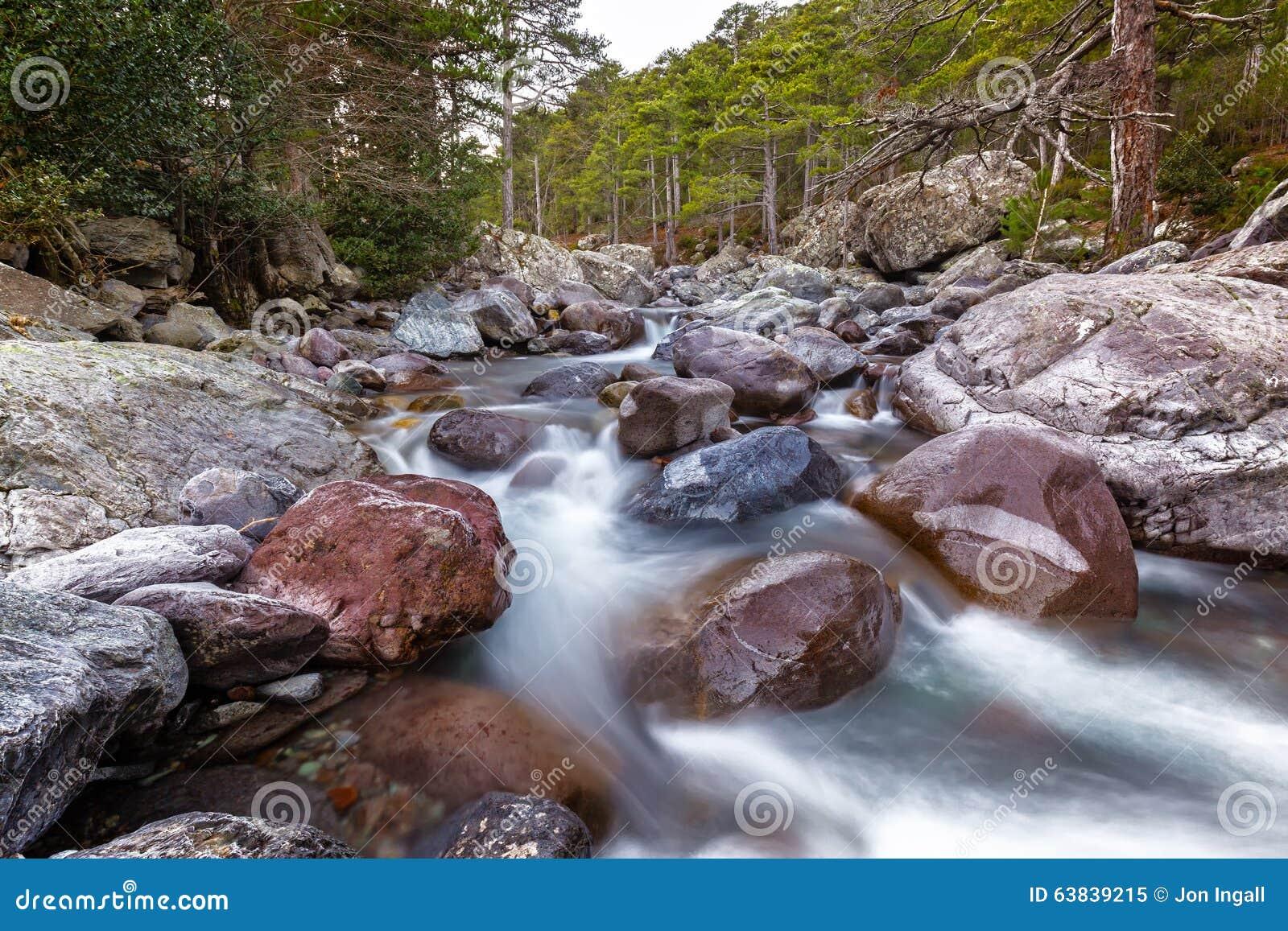 Szybka bieżąca Asco rzeka w Corsica