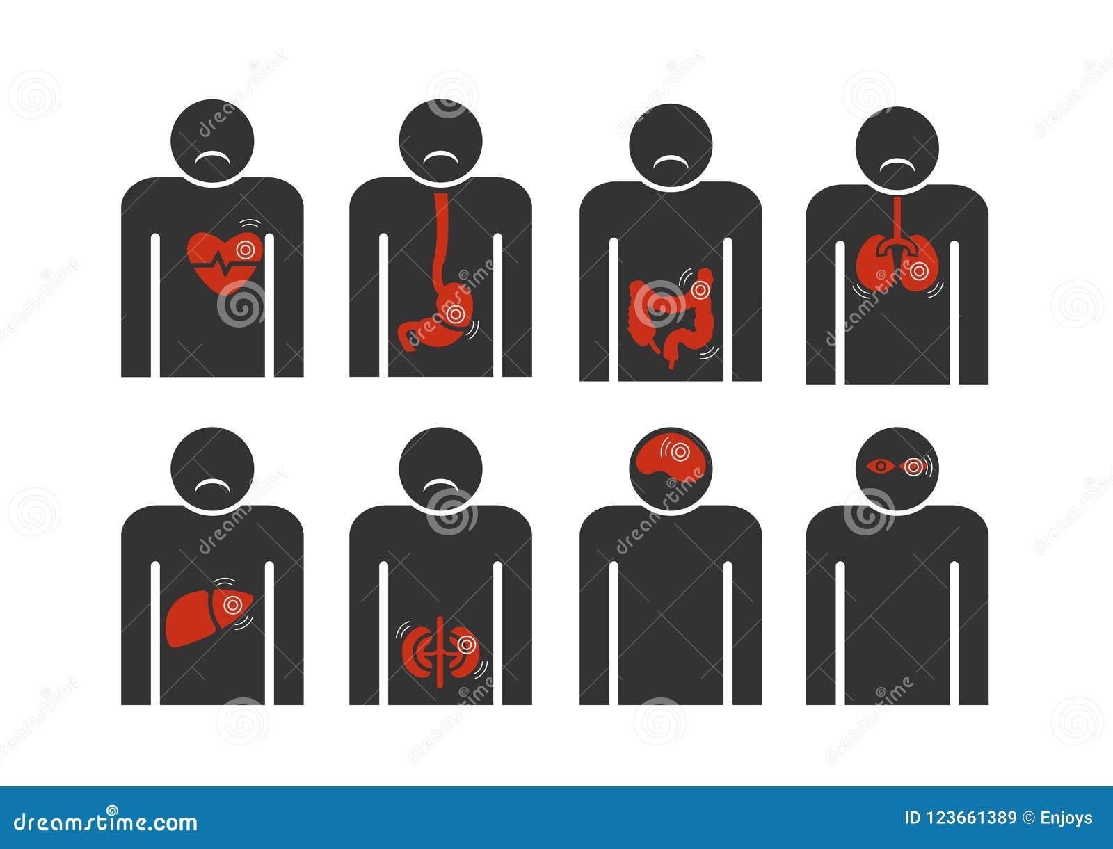 Szyldowa istota ludzka z sercem, wątróbka jelitowa, Żołądkowy, płuco choroby abstrakt na białym tle