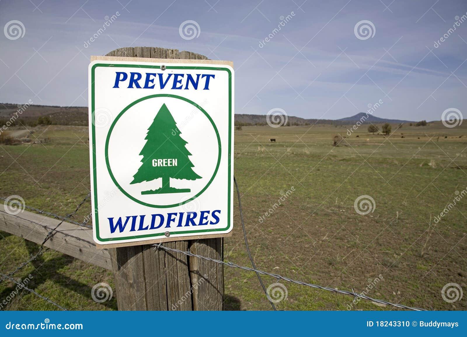 Szyldowi ostrzegawczy pożary