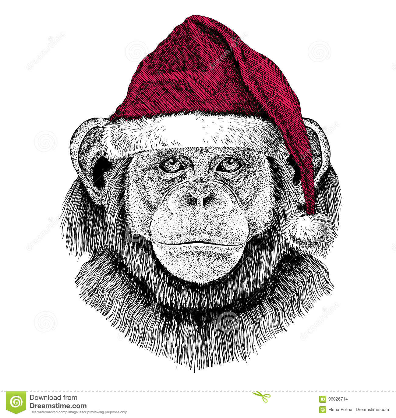 Szympansa Małpi Bożenarodzeniowy ilustracyjny dzikie zwierzę jest ubranym bożego narodzenia Santa Claus kapeluszowej Czerwonej zi
