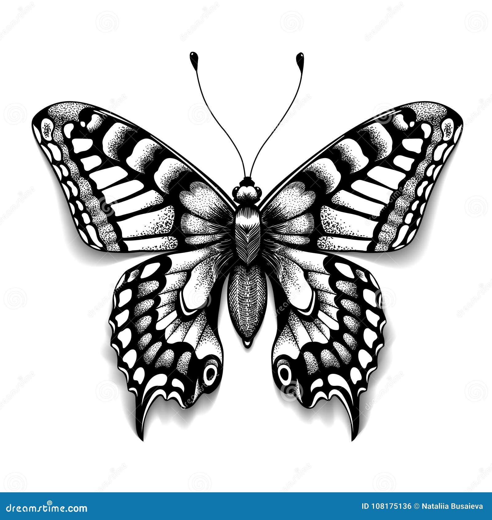 Tätowierungskunstschmetterling für Design und Dekoration Realistischer Schmetterling mit Schatten Vektorskizze des Schmetterlinge