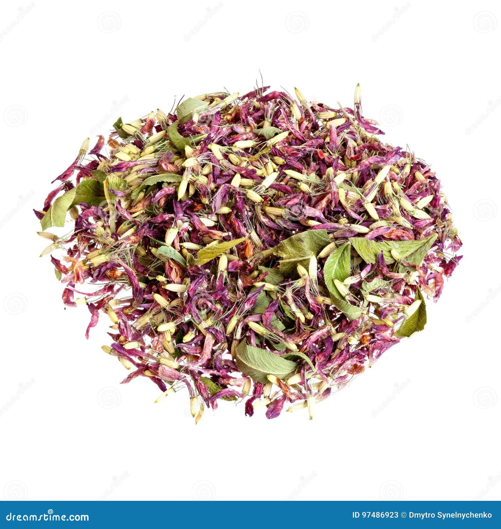 Tè del trifoglio isolato su un bianco