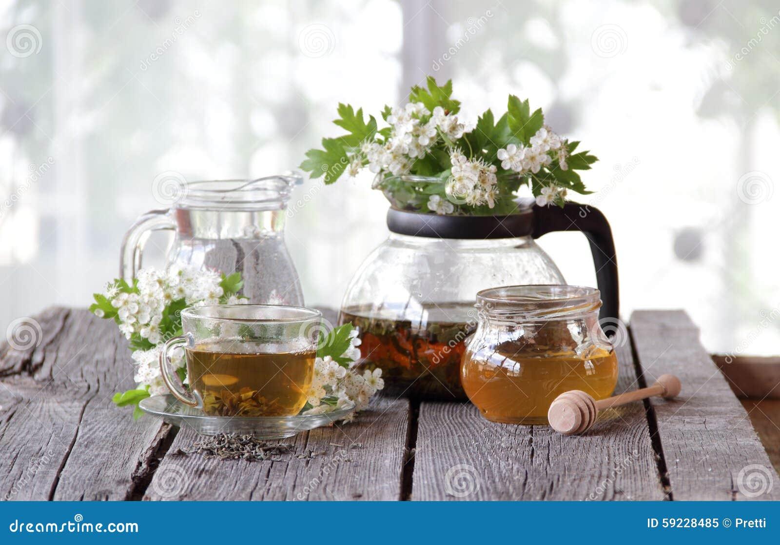 Download Té Verde En Una Taza De Cristal, Miel Y Una Rama De Un Espino Floreciente Imagen de archivo - Imagen de apacible, espino: 59228485