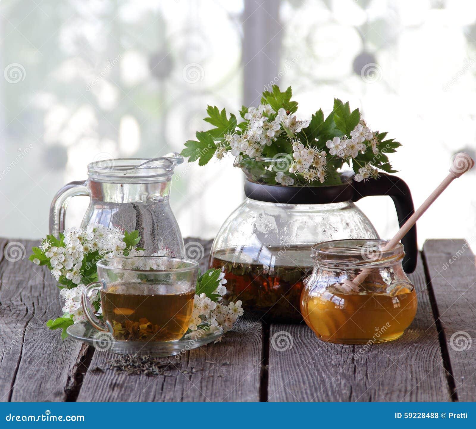 Té verde en una taza de cristal, miel y una rama de un espino floreciente