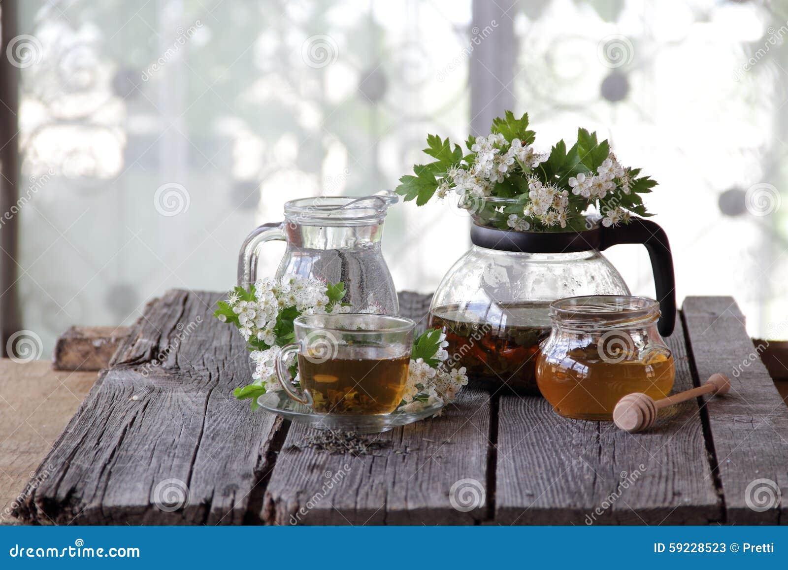 Download Té Verde En Una Taza De Cristal, Miel Y Una Rama De Un Espino Floreciente Imagen de archivo - Imagen de hojas, platillo: 59228523