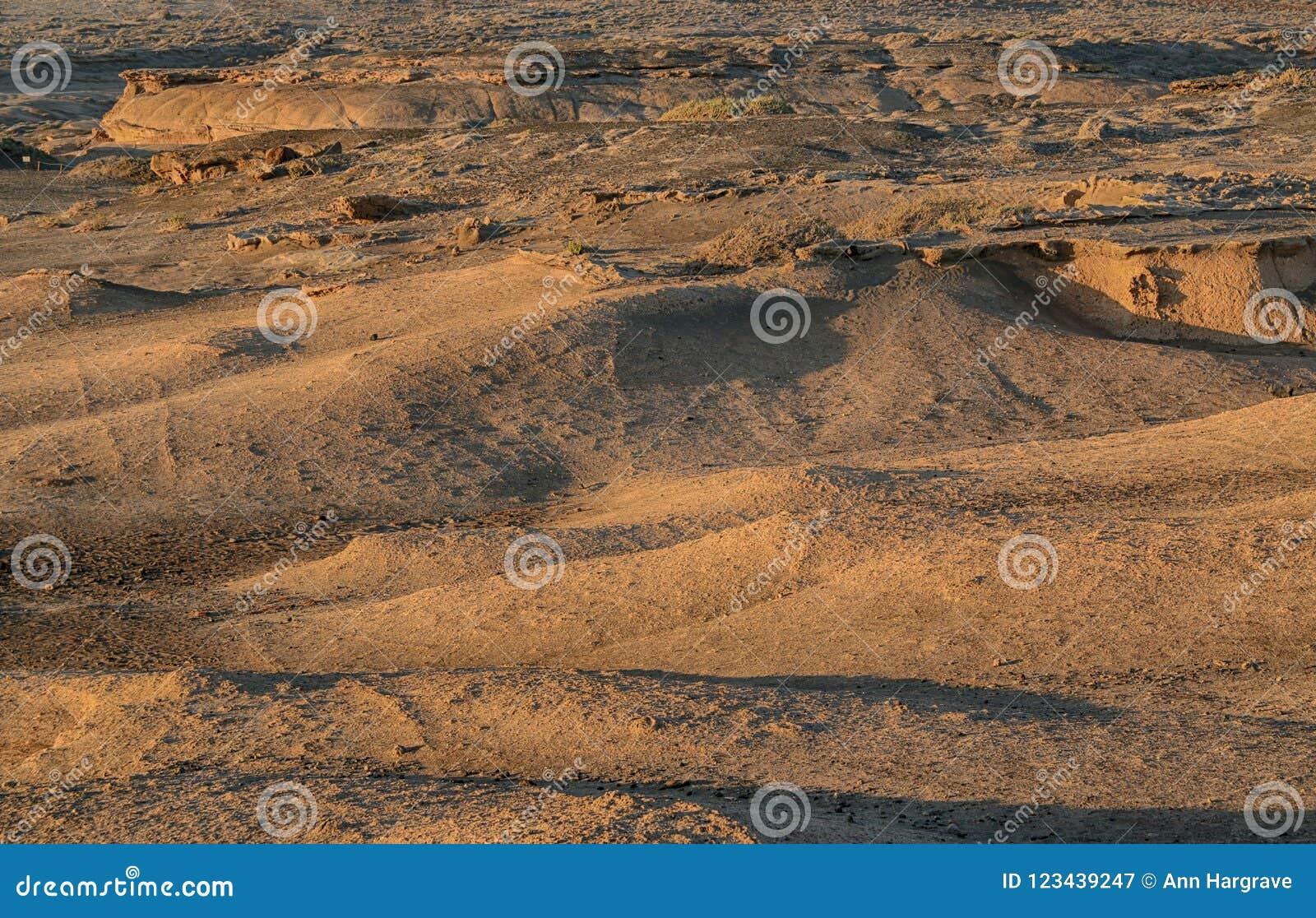 Ténérife, montagne d Amirilla, secteur du sud