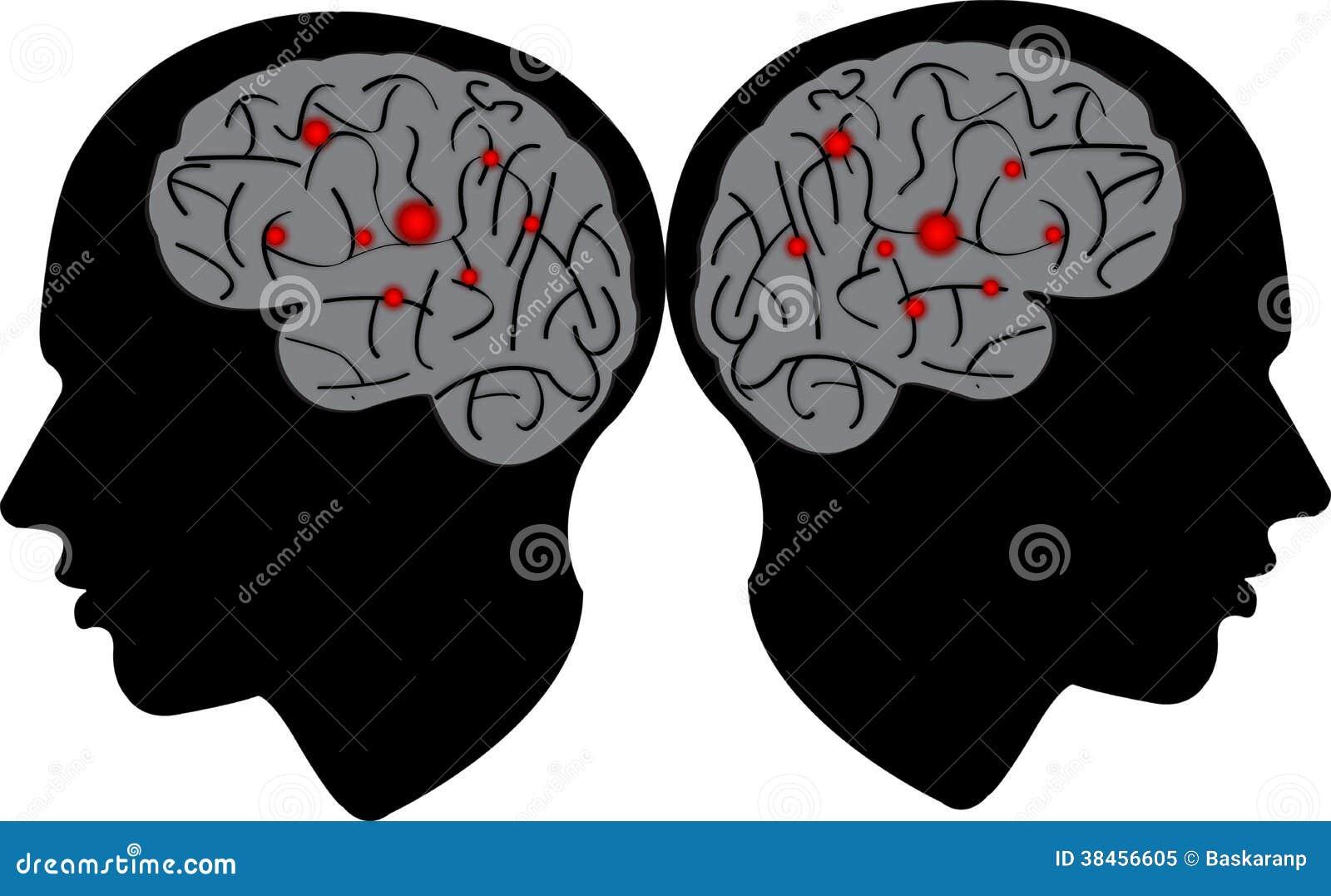 Tête d homme avec le cerveau