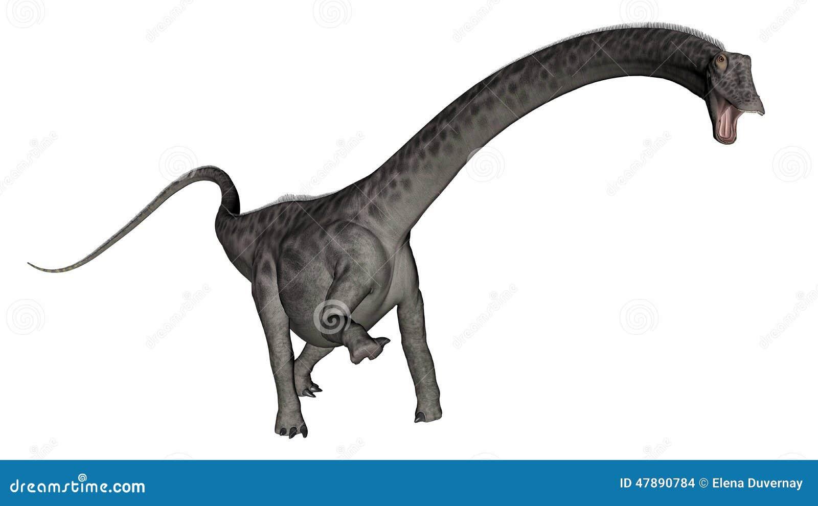 tte de dinosaure de diplodocus 3d rendent