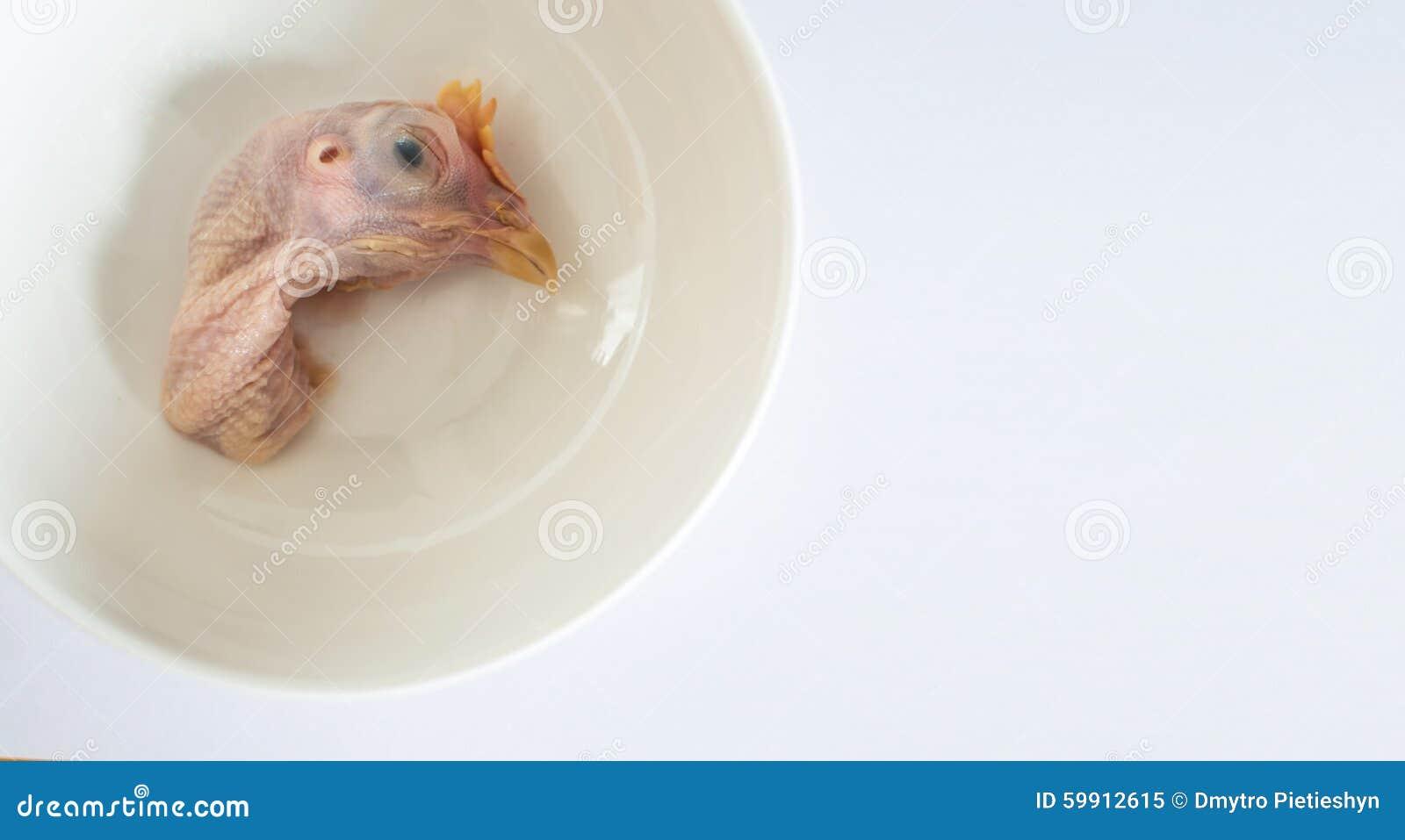 Tête de poulet