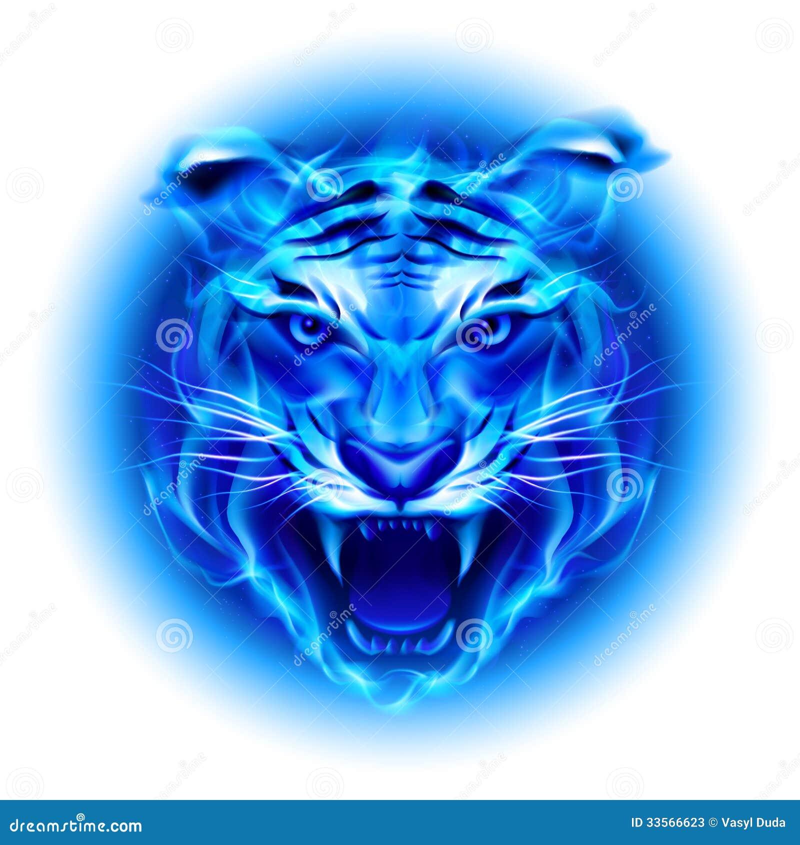Tête de tigre bleu du feu.