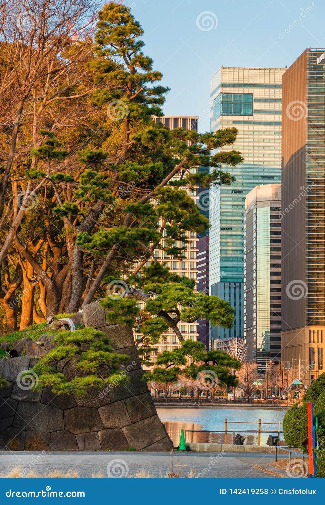 Tóquio entre a tradição e a modernidade