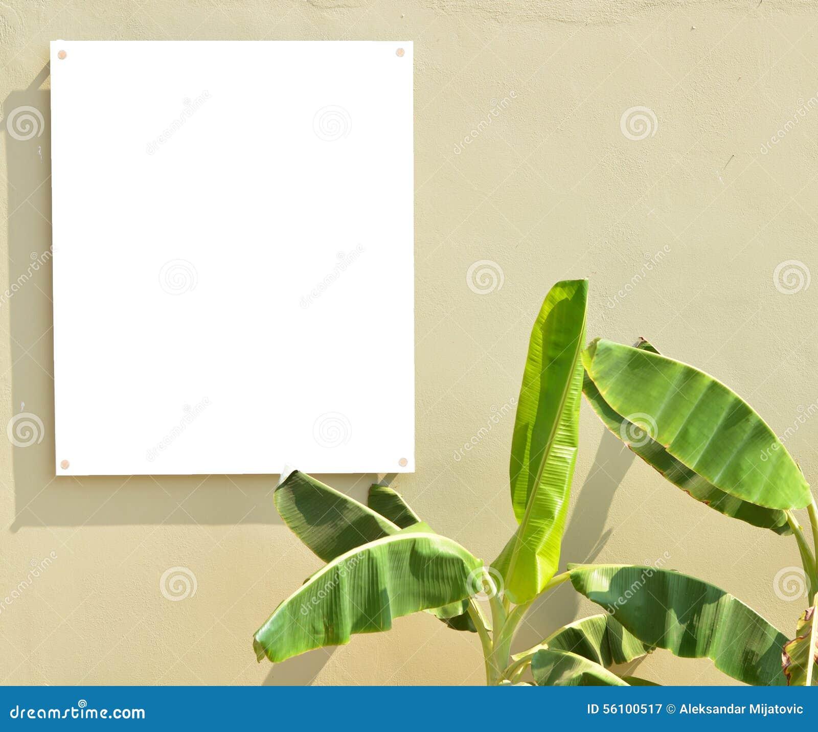 Töm brädeonwväggen med palmblad