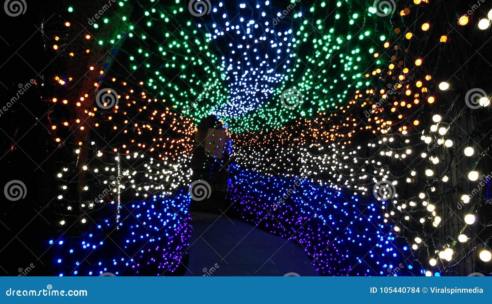 Túnel mágico das luzes