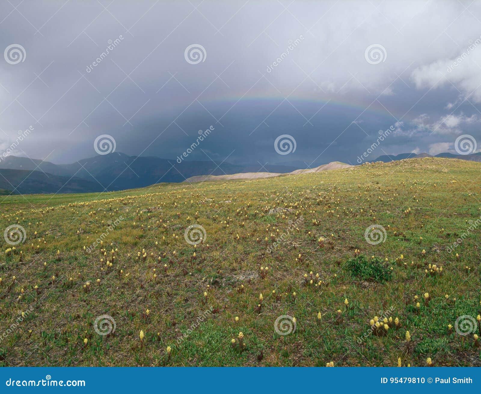 Tęcza na Kontynentalnego podziału śladzie, San Juan pasmo, Kolorado