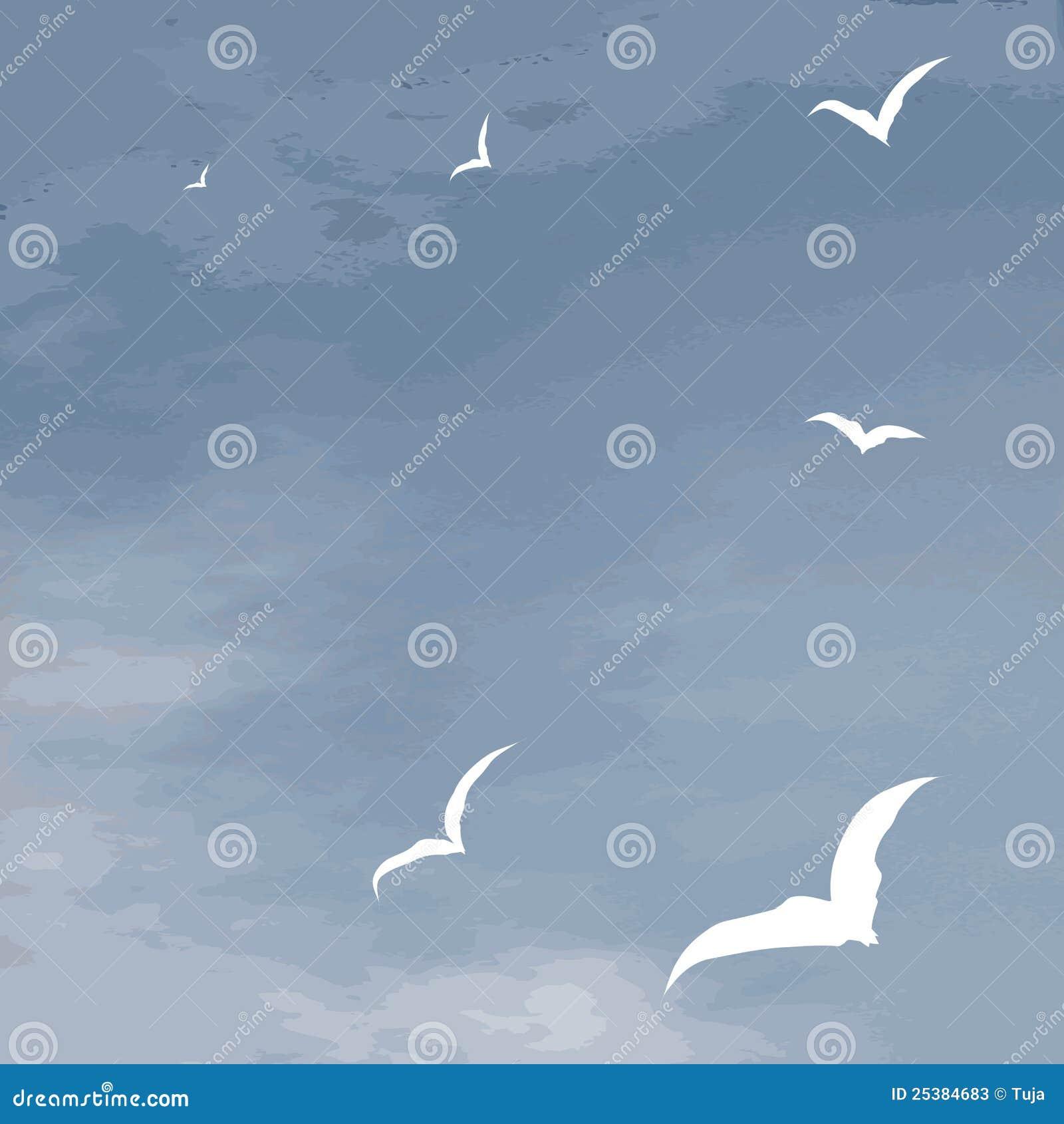 Tła latający denny seagulls powierzchni wektor