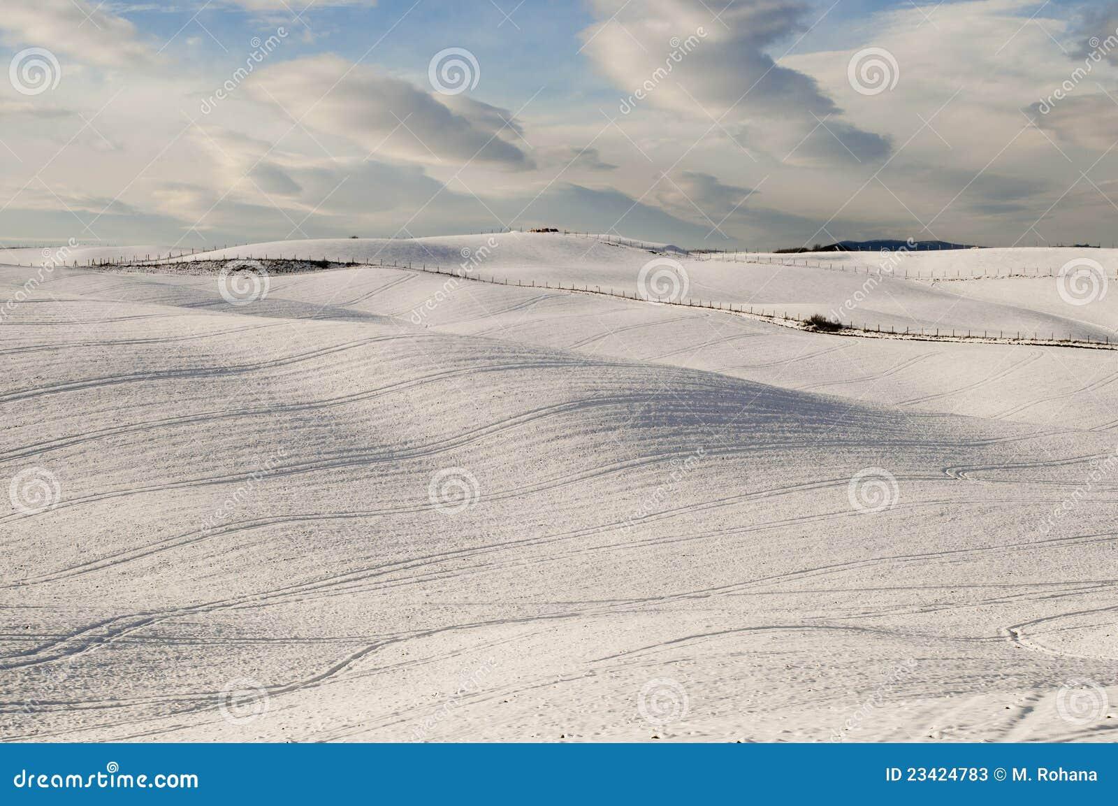 Tła snowscape