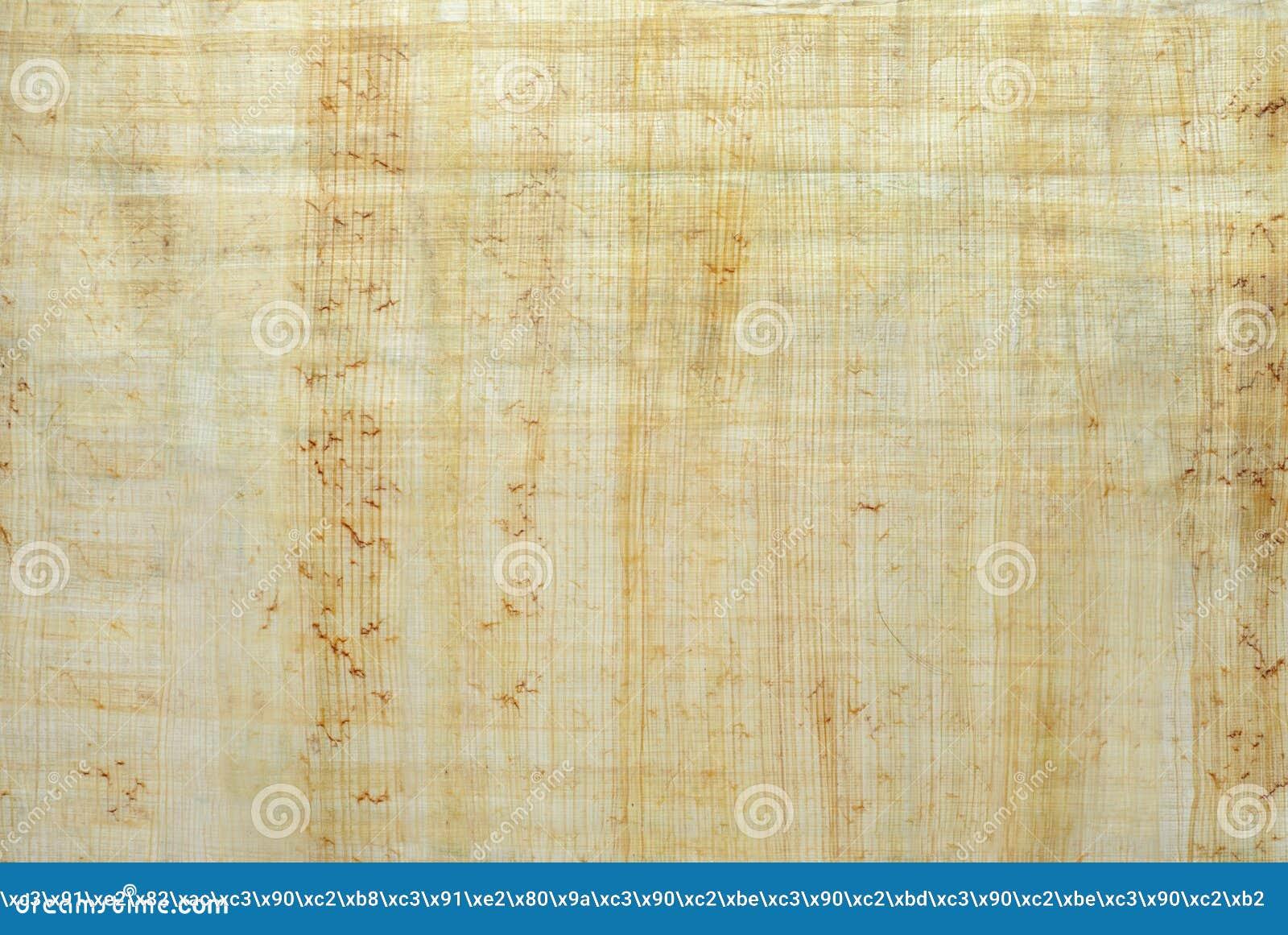 Tło, tekstura: powierzchnia naturalny Egipski papirus