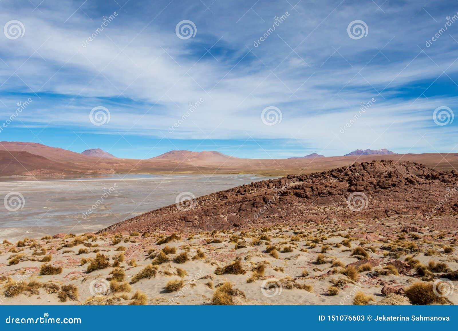 Tło z jałową pustynną scenerią w Boliwijskich Andes w rezerwacie przyrodym Edoardo Avaroa,