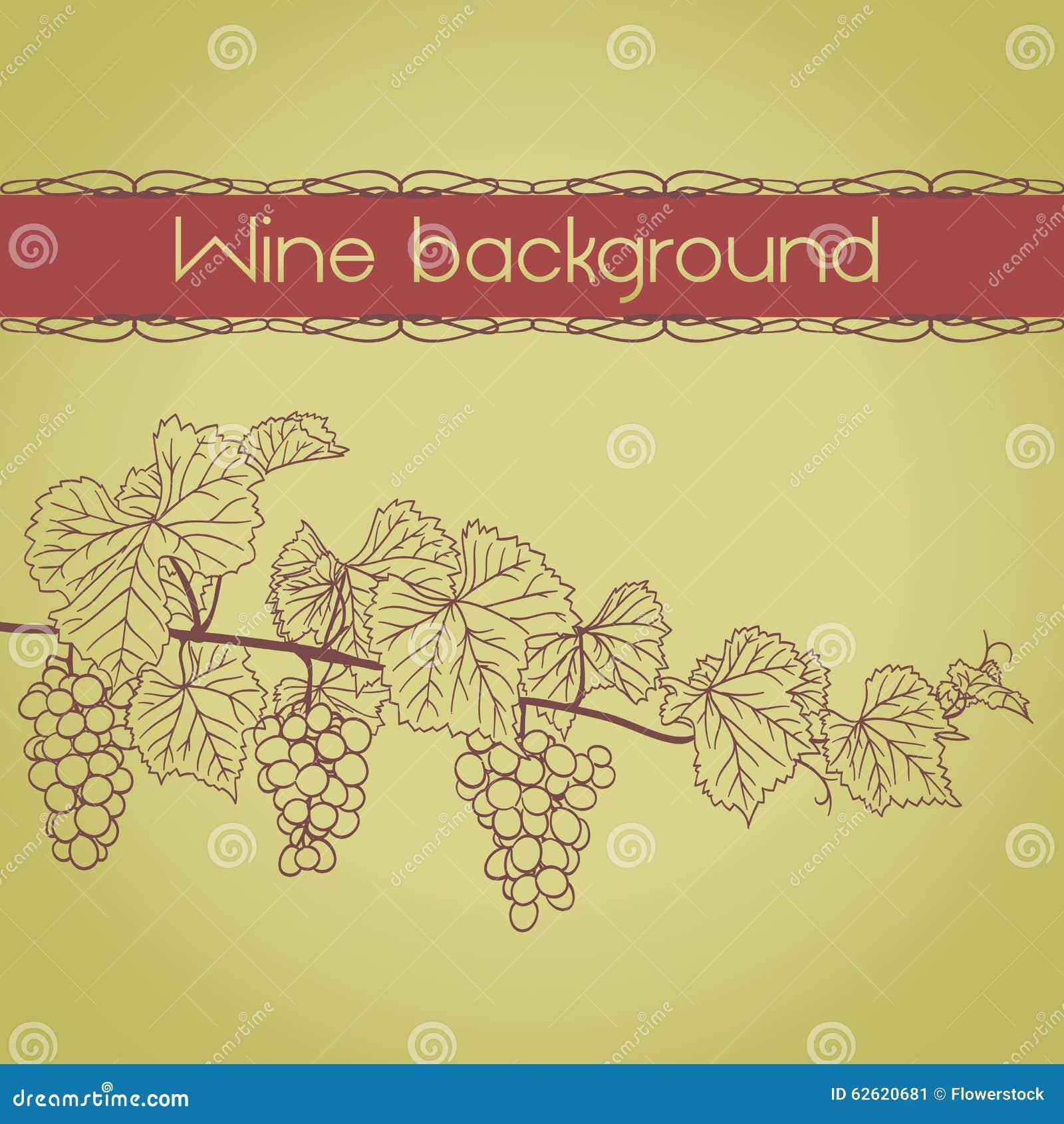Tło z winorośl konturem z winogronami