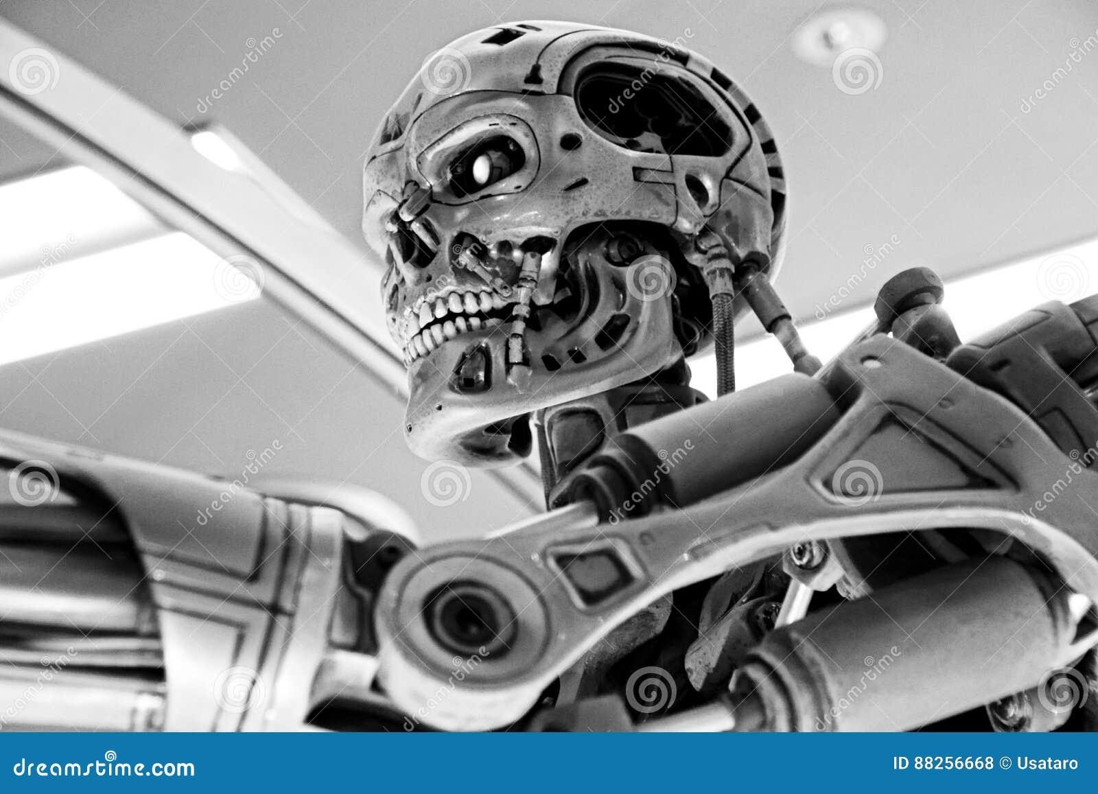 T-800 End skeleton
