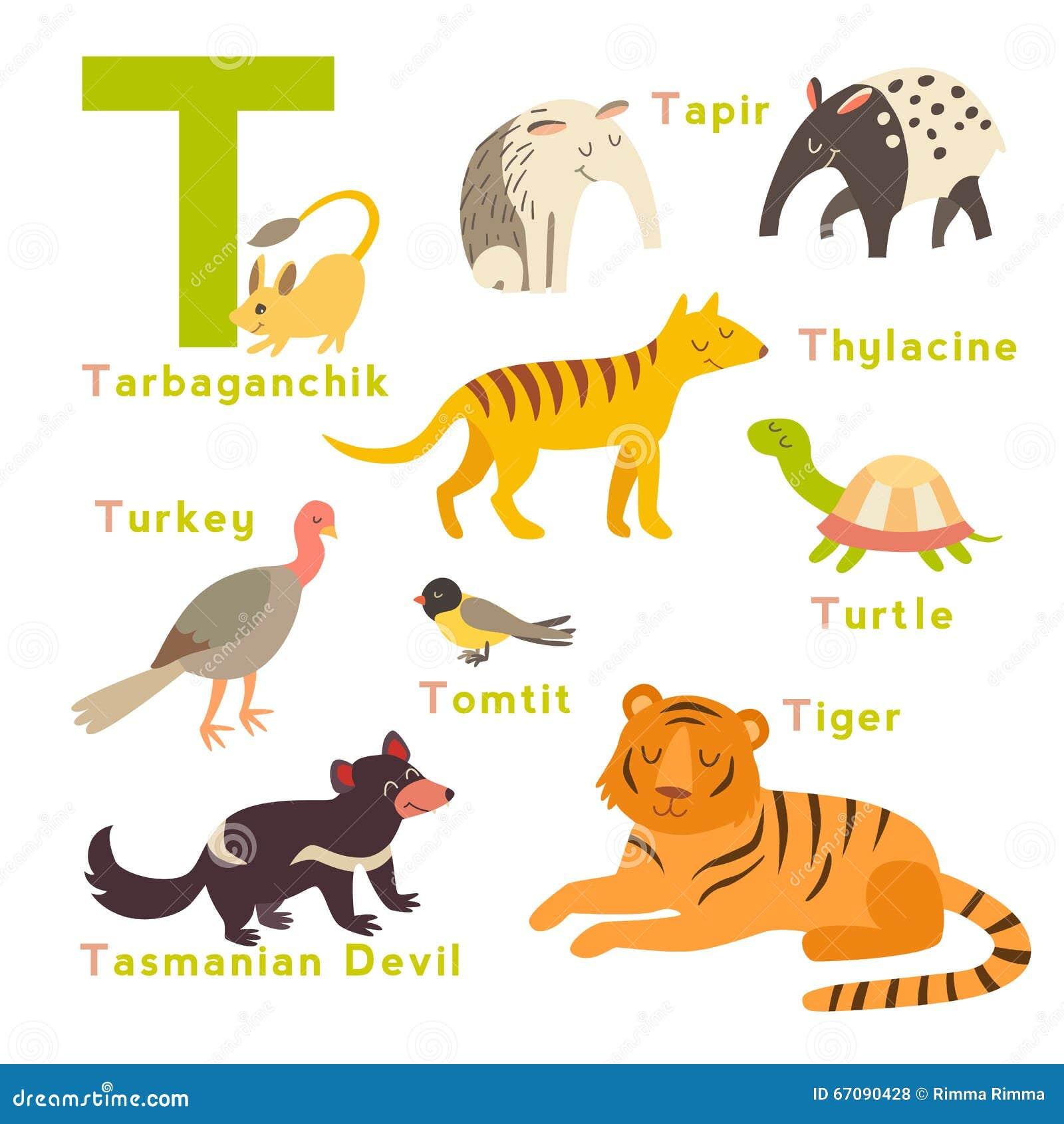 Animals Start In Letter Y