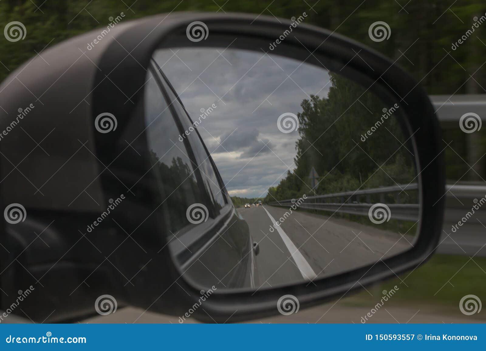 T?o plama zamazywa? chwyta frisbee doskakiwania ruch Widok lasowa droga przez bocznego lustra samochód