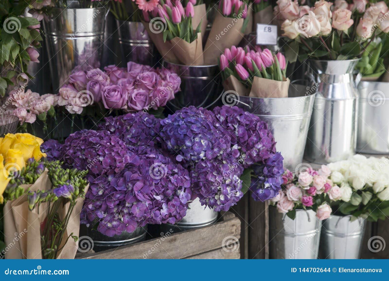 T?pfe mit sch?nem bl?hendem Rosa und purpurrote Hortensieblumen f?r Verkauf au?erhalb des Blumenladens Gartenspeichereingang verz