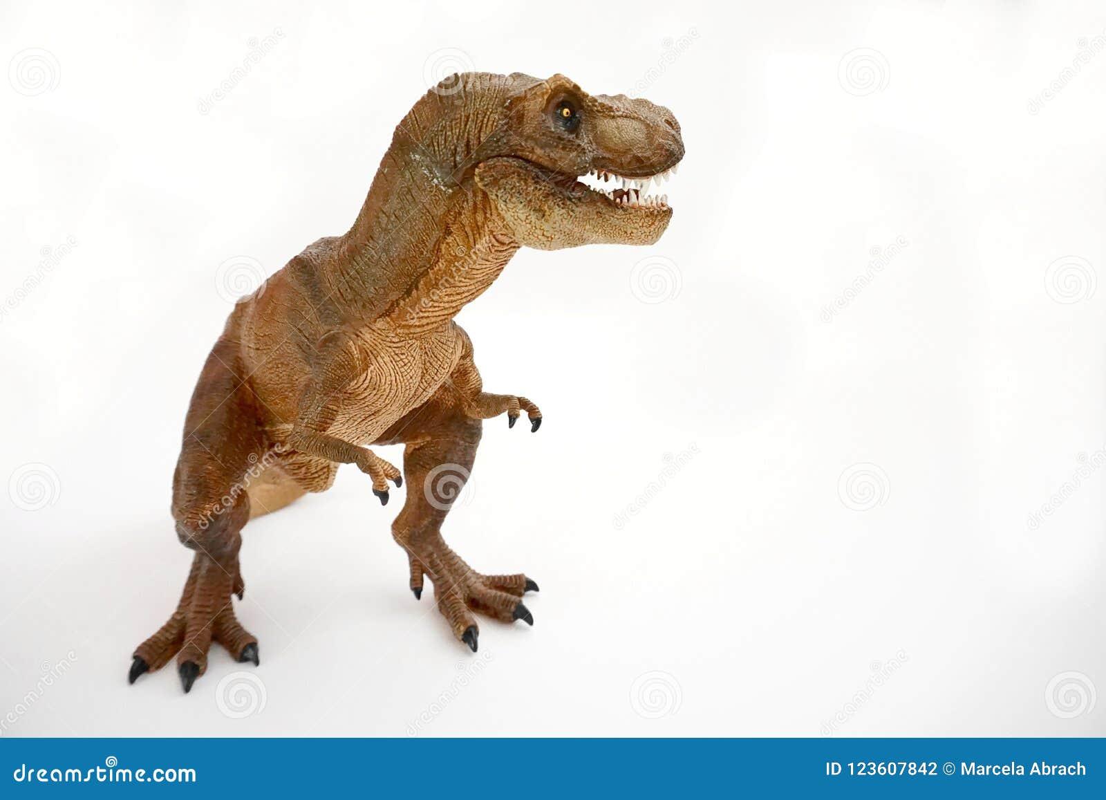 T-rex de rex de tyrannosaure de Brown, chiffre didactique coelurosaurian de dinosaure de theropod avec la bouche ouverte