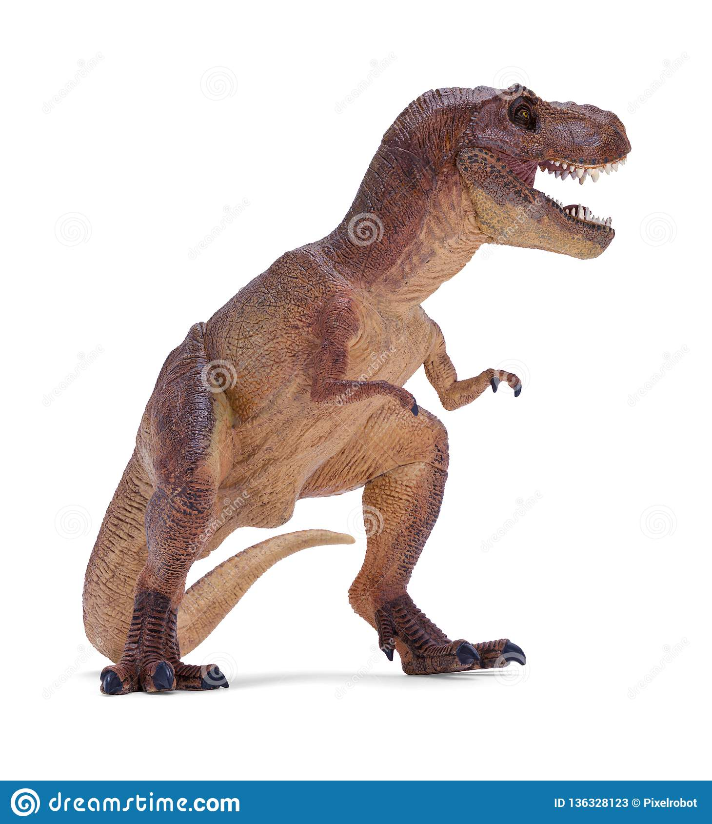 T Rex Side View Stock Image Image Of Extinct Reptile 136328123
