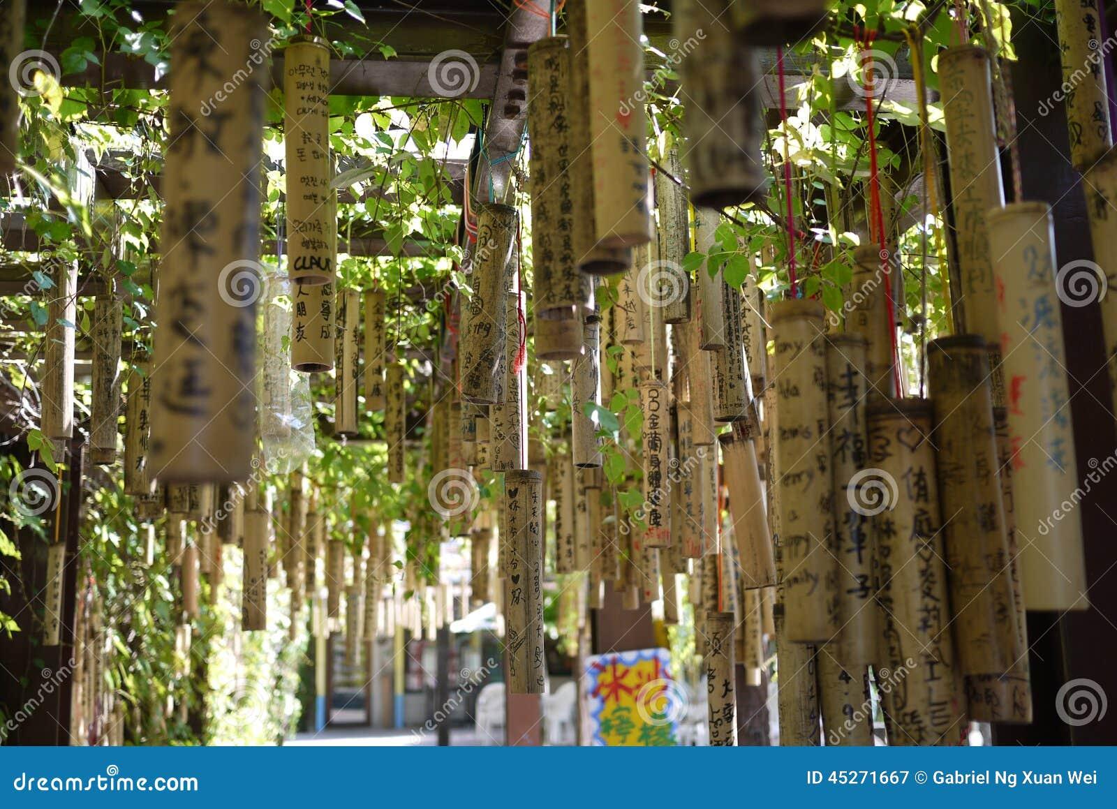 Taïwan souhaitant le bambou