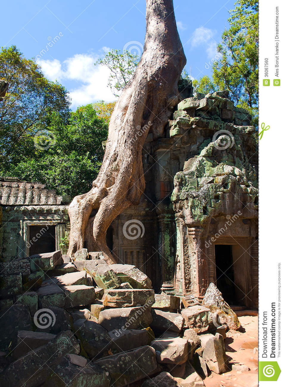 Ta Prohm Temple Naer Angor Wat In Cambodia Stock Photo Image 3606