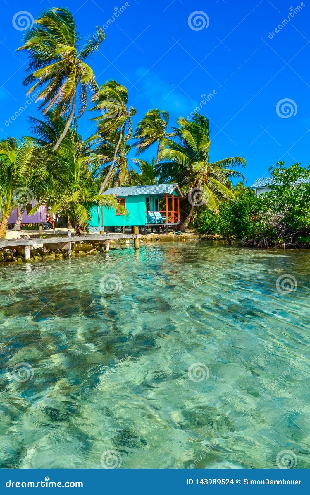 Tabaco Caye - relaj?ndose en la cabina o la casa de planta baja en la peque?a isla tropical en la barrera de arrecifes con la pla