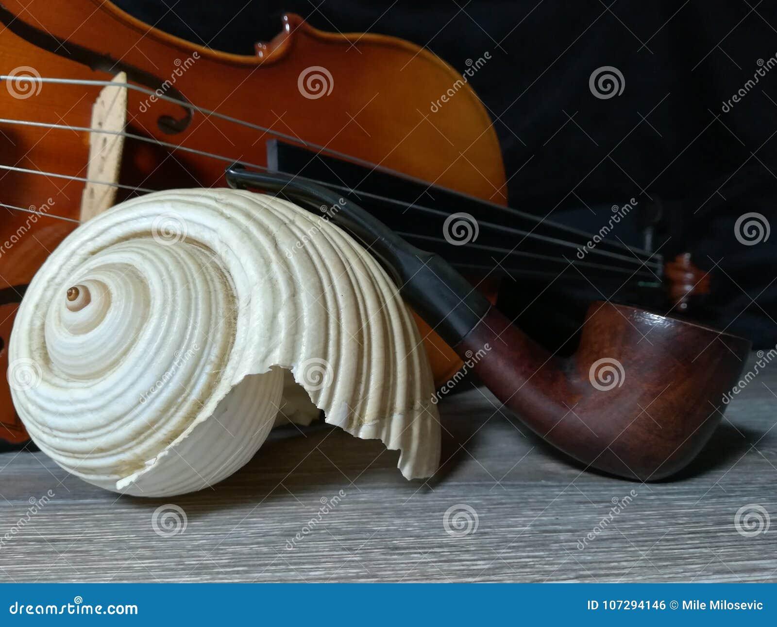 Tabaczna drymba, stary skrzypce i denny bubel,