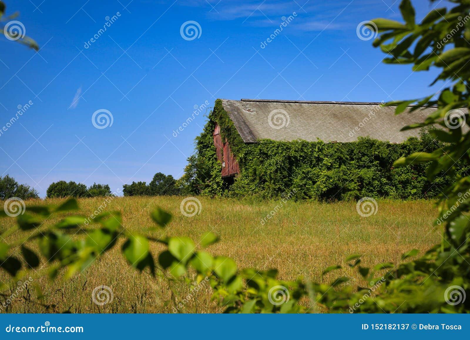 Tabak-Bauernhof-Scheune Windsor Connecticut