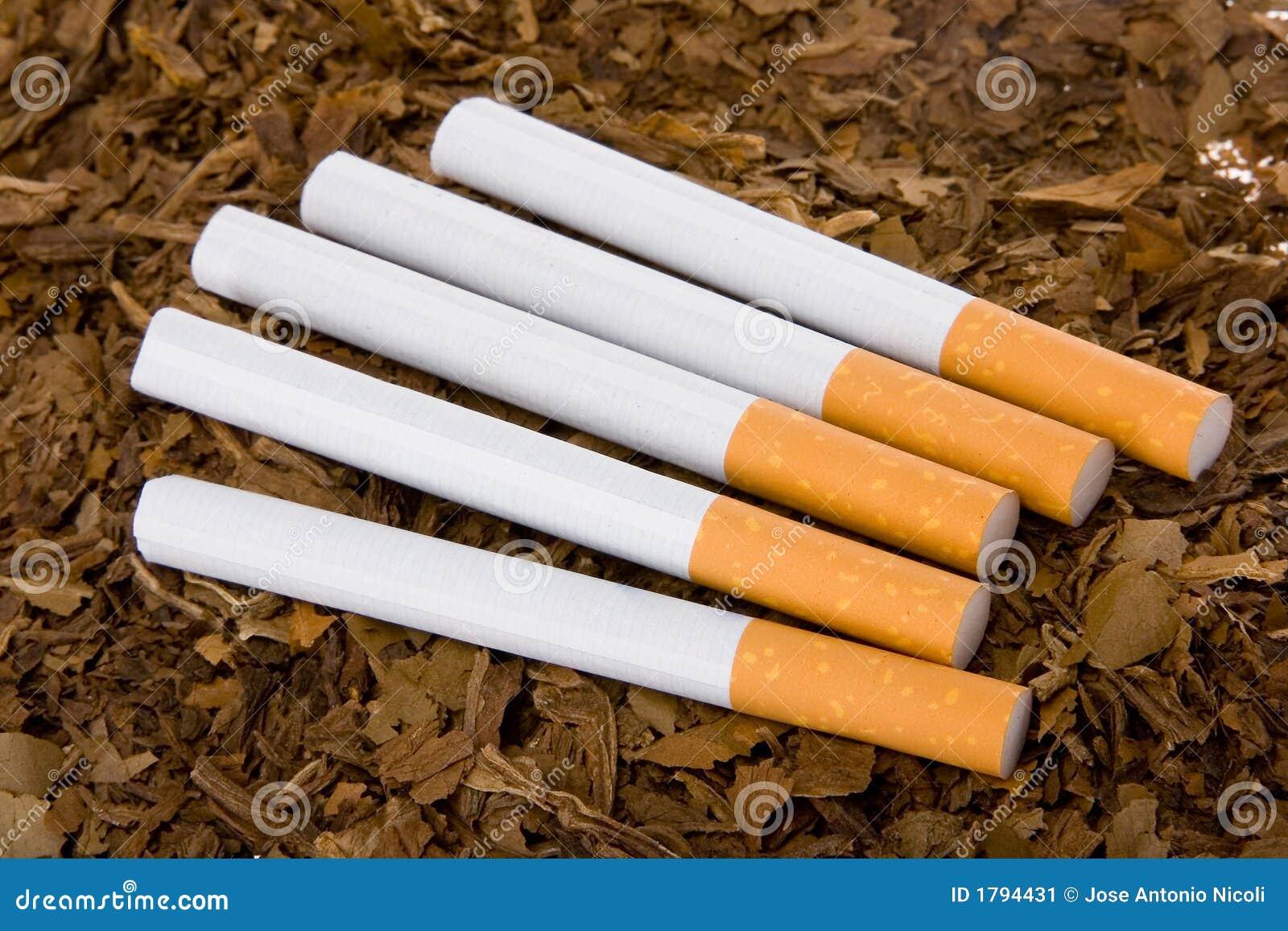 tabak und zigaretten 3 stockbild bild von lebensstil 1794431. Black Bedroom Furniture Sets. Home Design Ideas