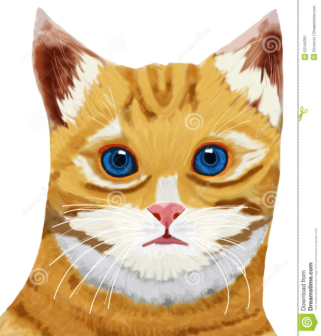 Tabby Cat Head Blue Eye Stock Photo Image 52144301
