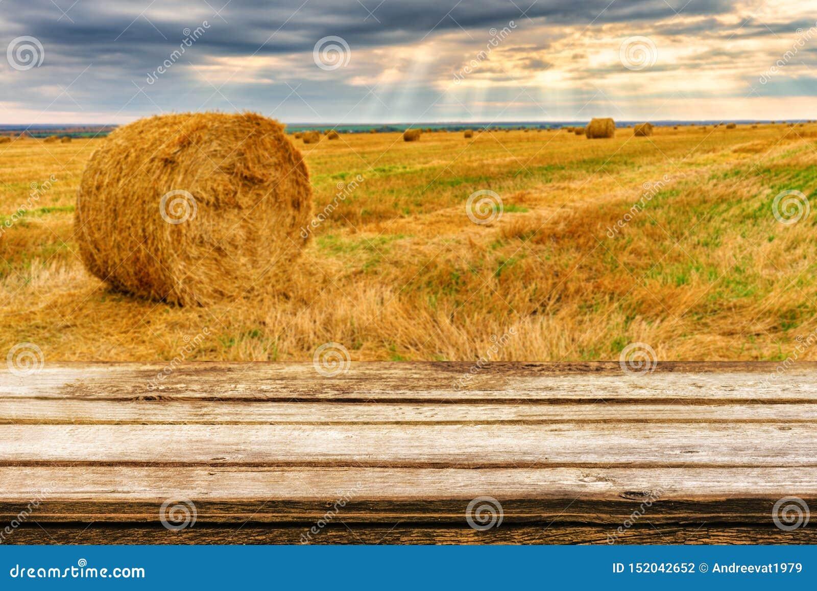 Tabela de madeira vazia com paisagem borrada do outono de pacotes chanfrados do campo e da palha Zombe acima para produtos da exp
