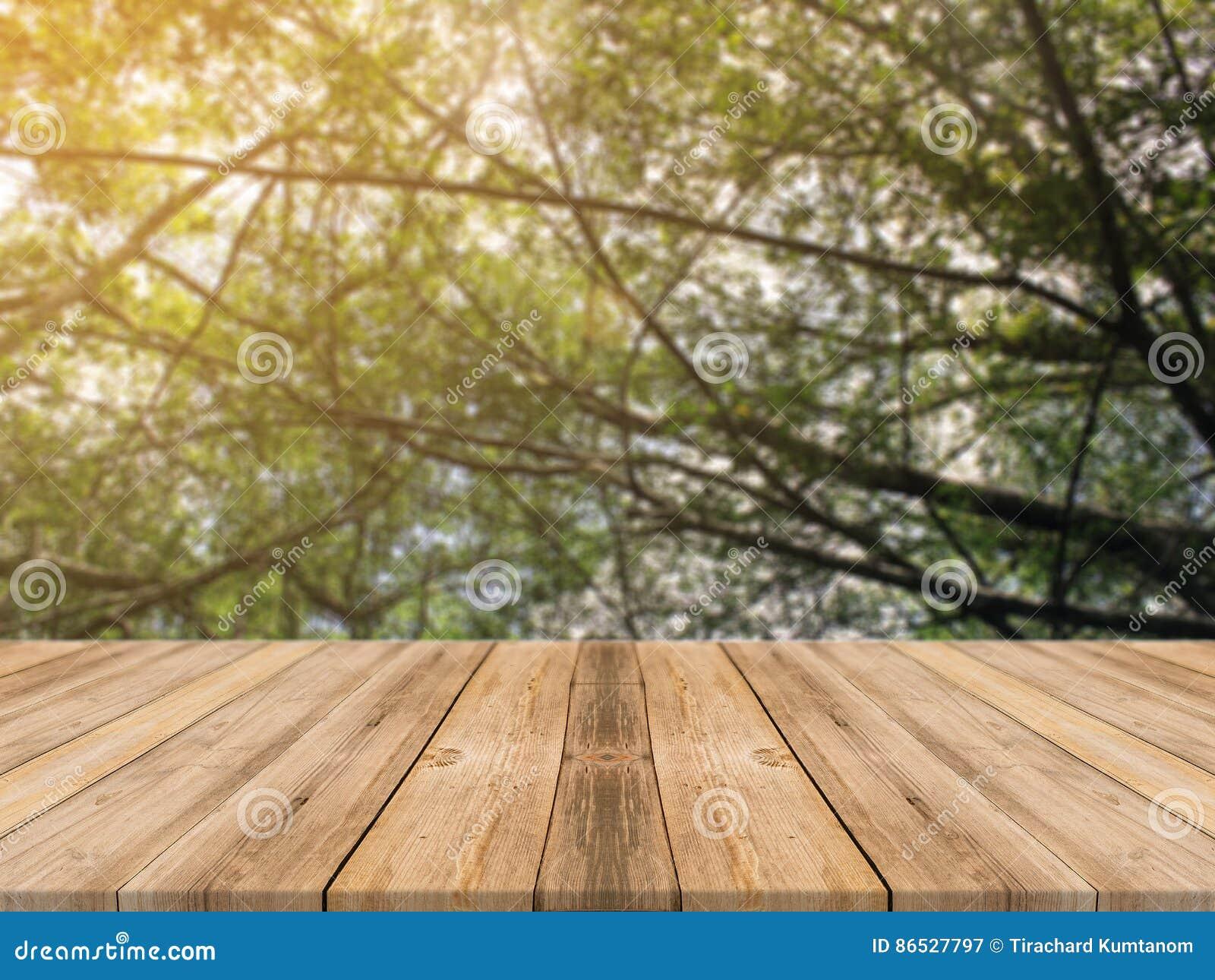 Tabela vazia da placa de madeira na frente do fundo borrado Tabela de madeira marrom da perspectiva sobre árvores do borrão no fu
