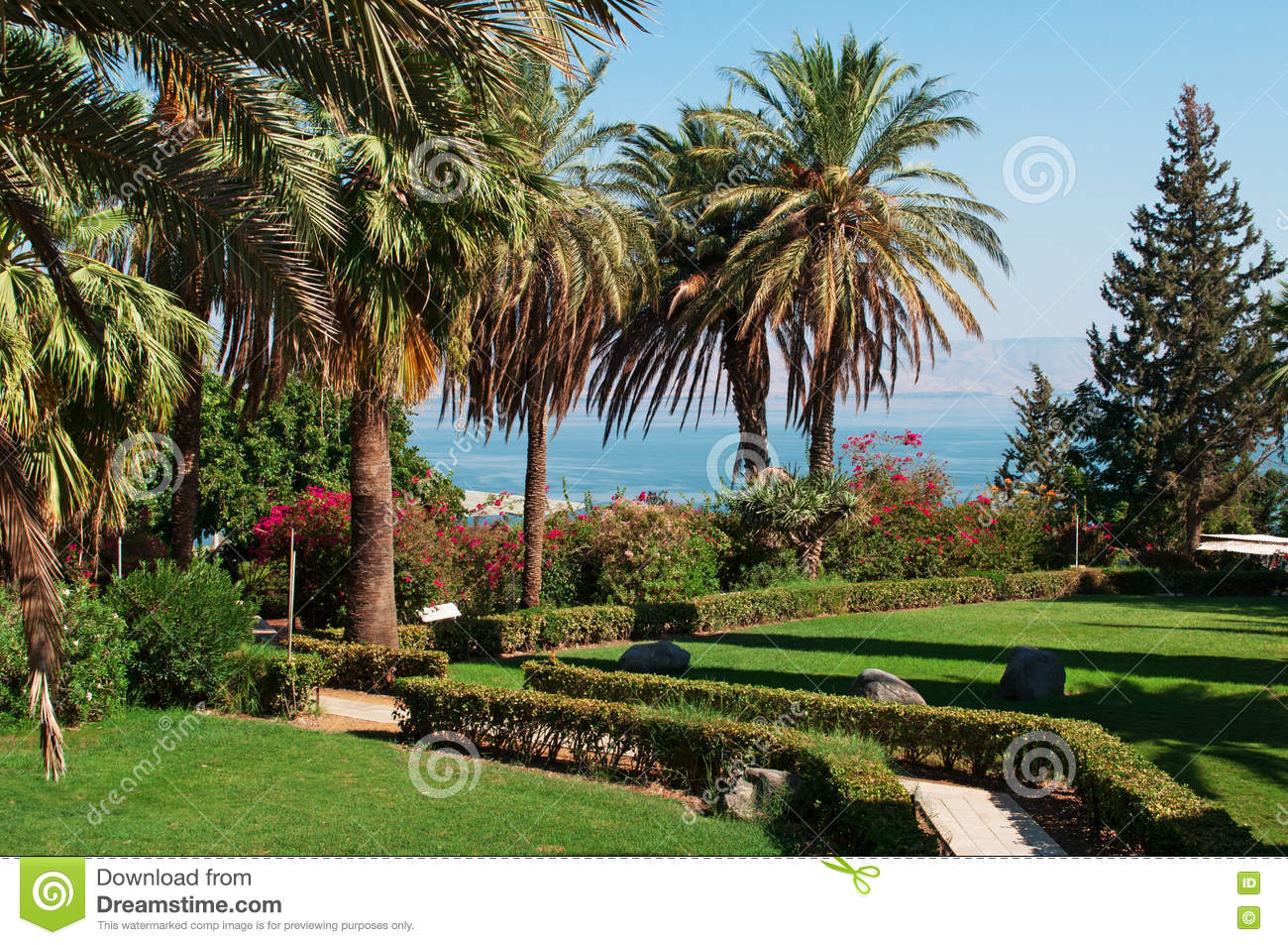 Tabgha, Israel, Middle East, Mount Of Beatitudes, Garden, Nature ...