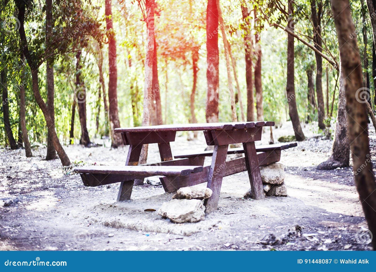 Tabla de madera en el bosque