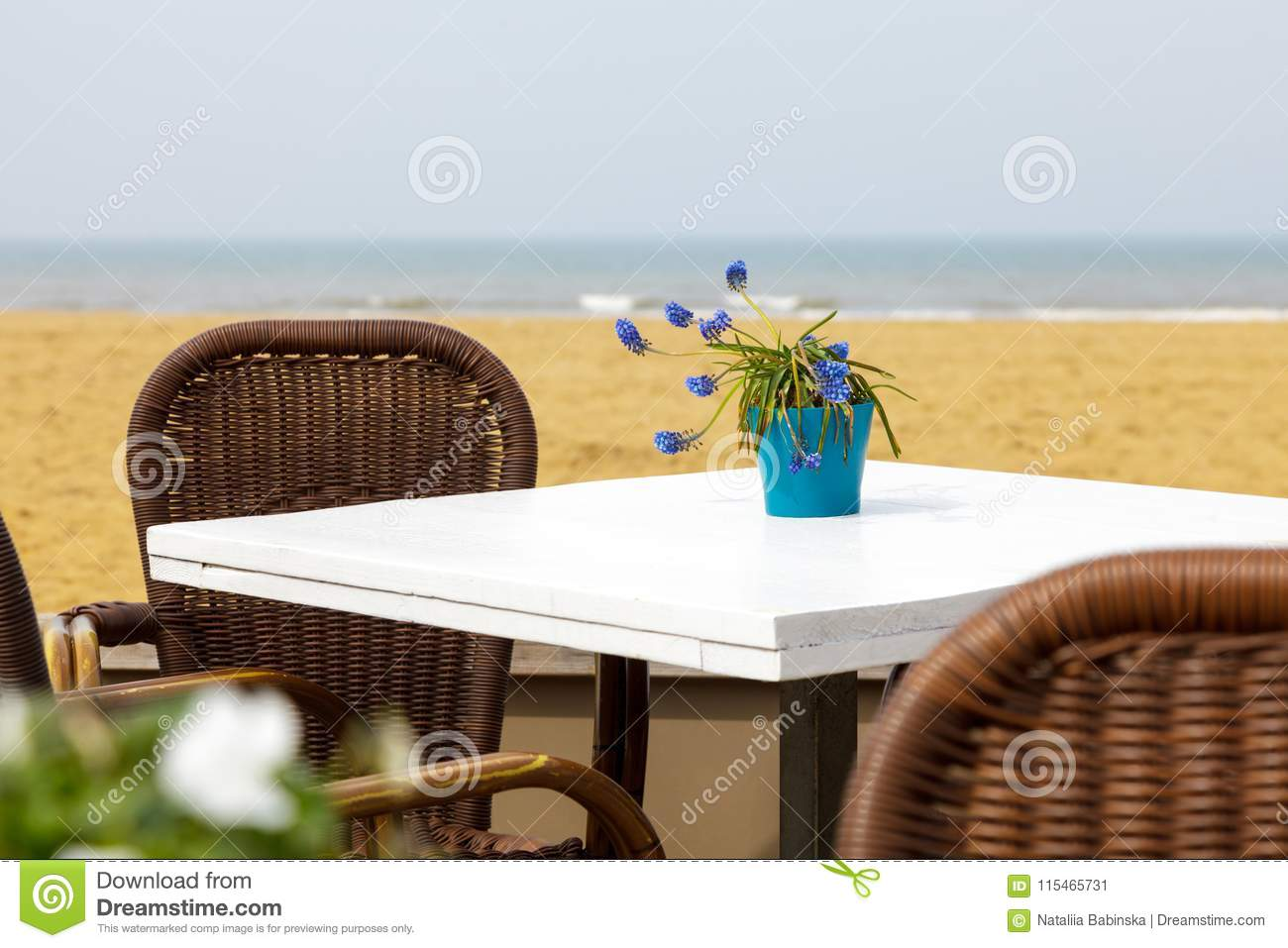 Wondrous Table Cafe Beach Sea Flowers Vase Blue White Lavender Purple Alphanode Cool Chair Designs And Ideas Alphanodeonline