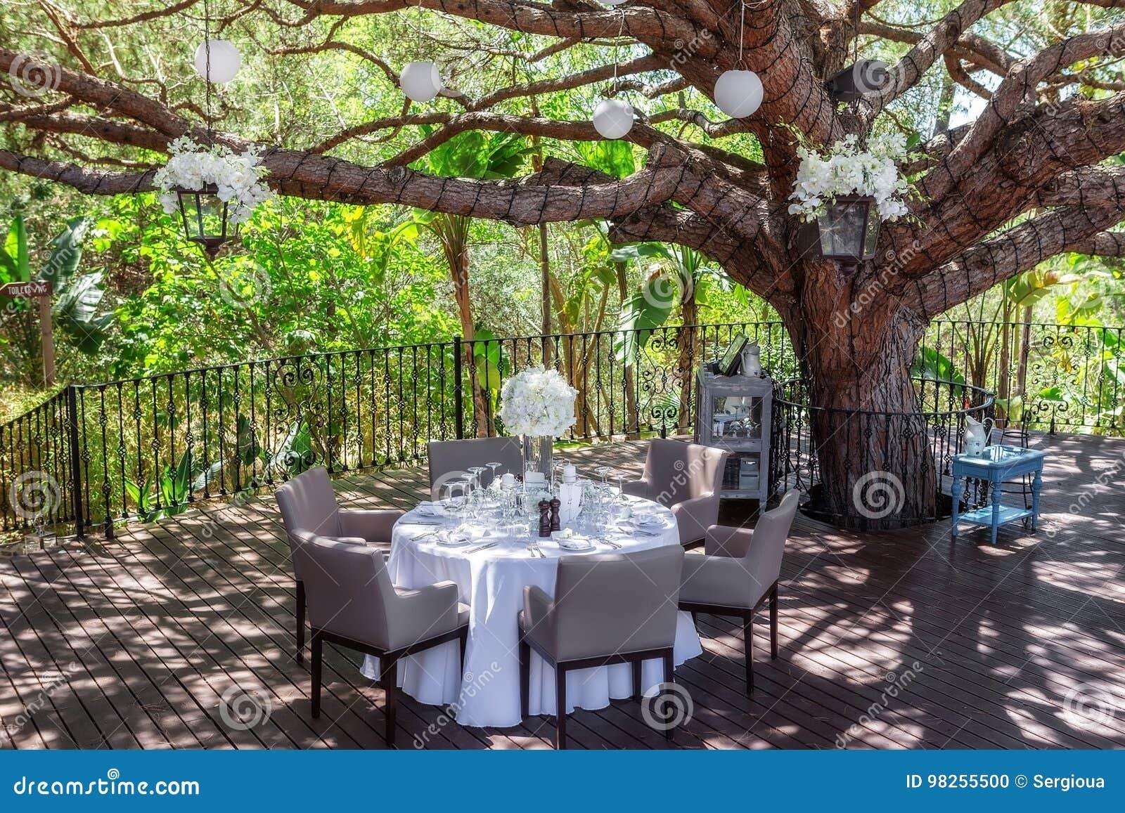 Decoration Table Mariage Arbre.Table De Mariage Dans Le Jardin Sous Un Arbre Photo Stock