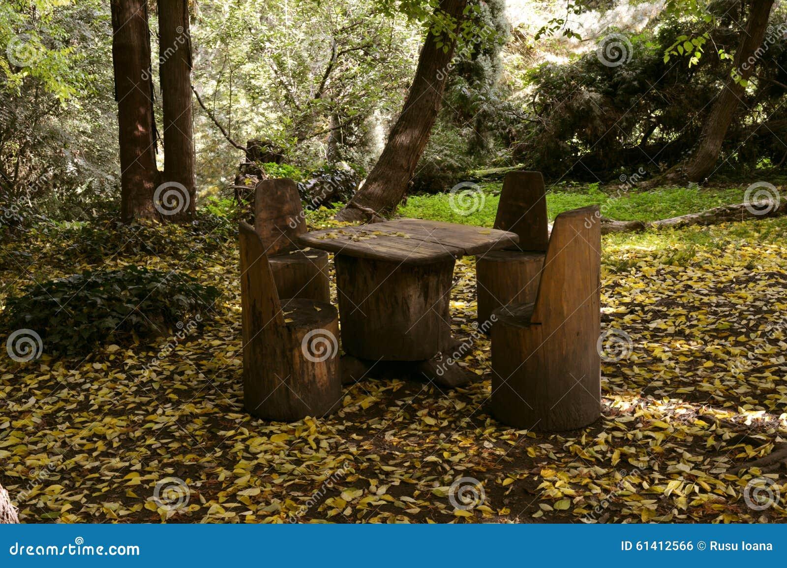 table et chaises de pique nique en bois rustiques dans la. Black Bedroom Furniture Sets. Home Design Ideas