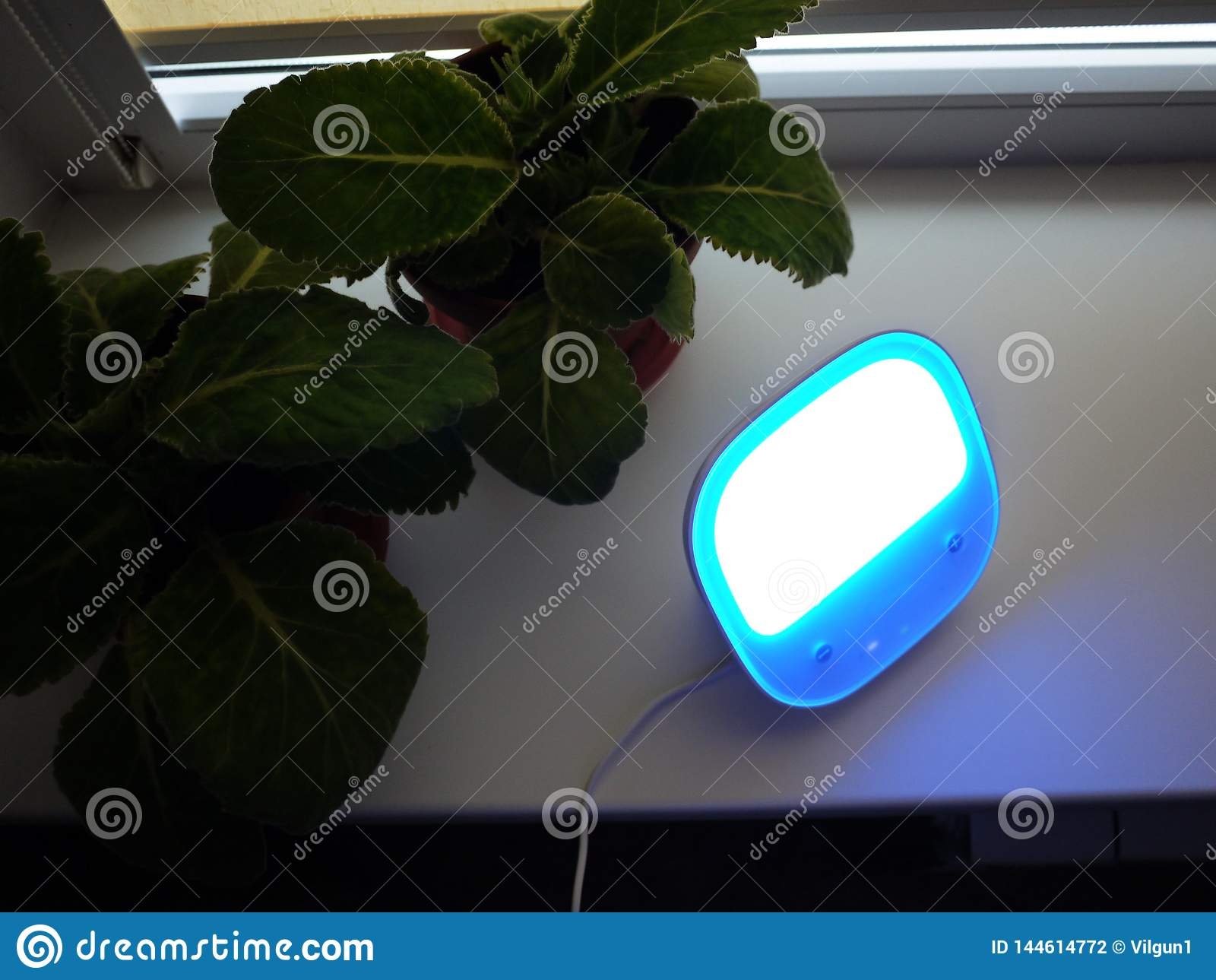 Table lamp at home. Used for lighting of various surfaces, the LED light bulbs. ..