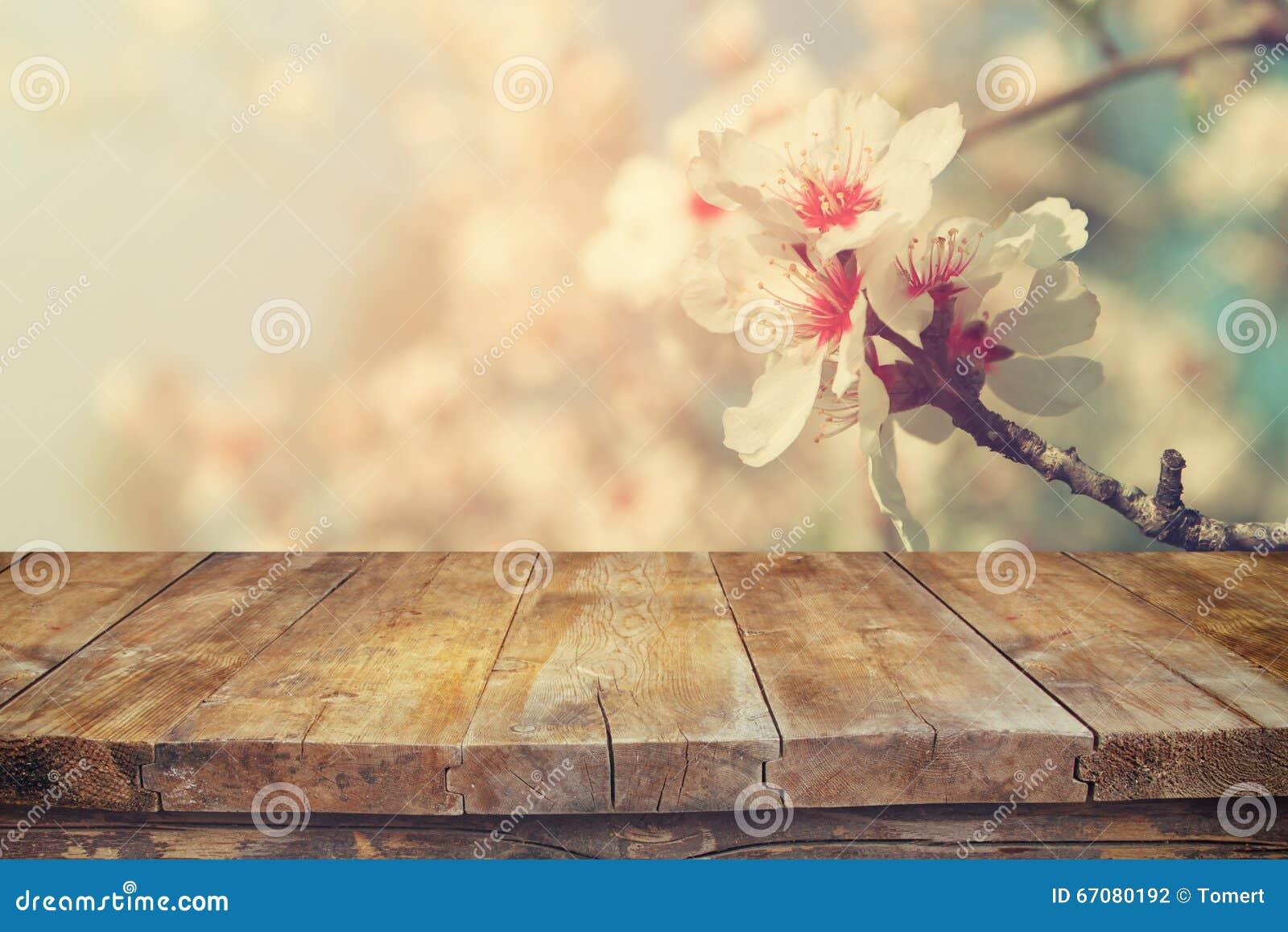 Table Rustique En Bois Devant L Arbre Blanc De Fleurs De Cerisier De