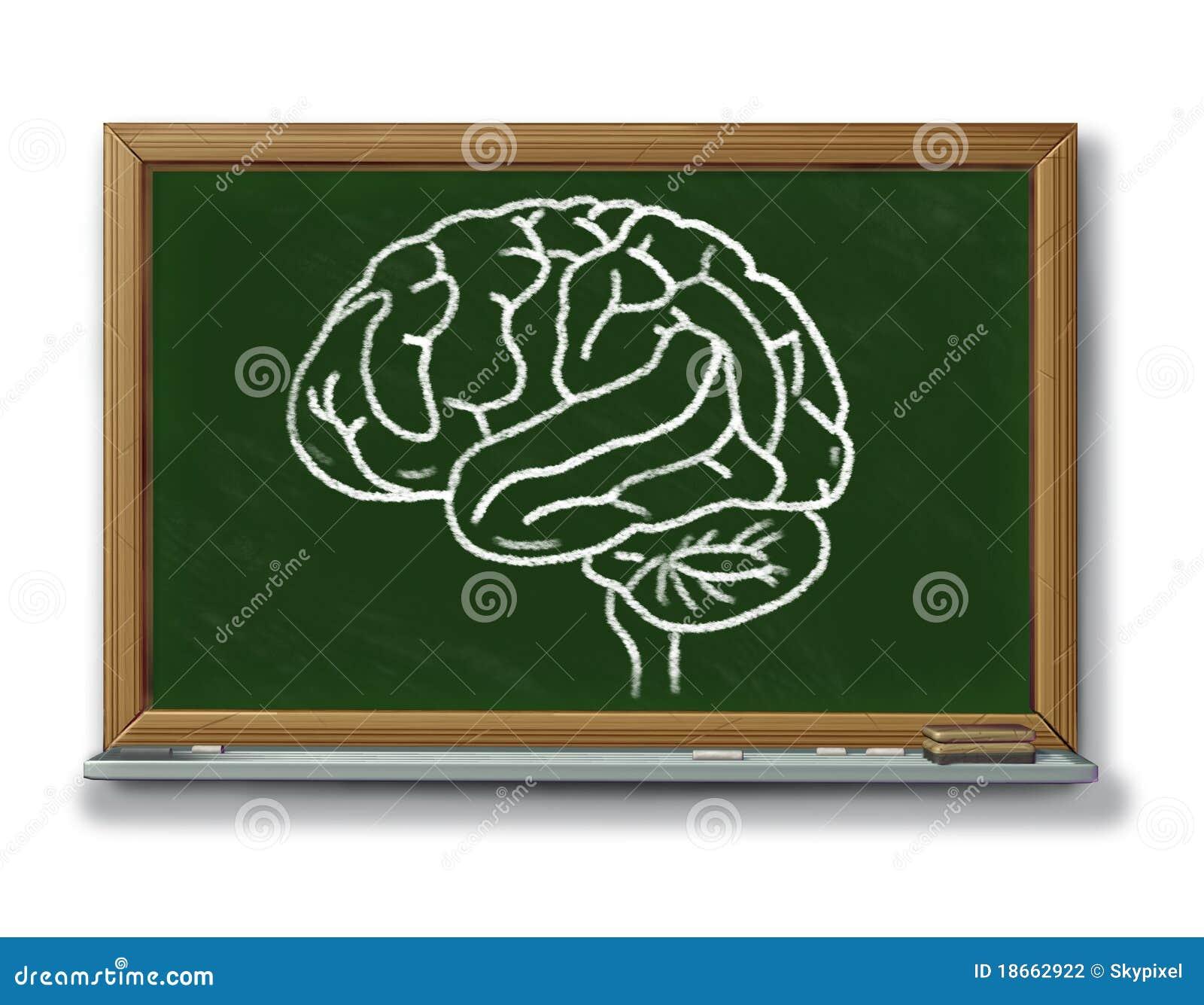 Tableau de diagramme de cerveau sur un tableau noir illustration stock illustration du examen for Ecrire sur un tableau noir