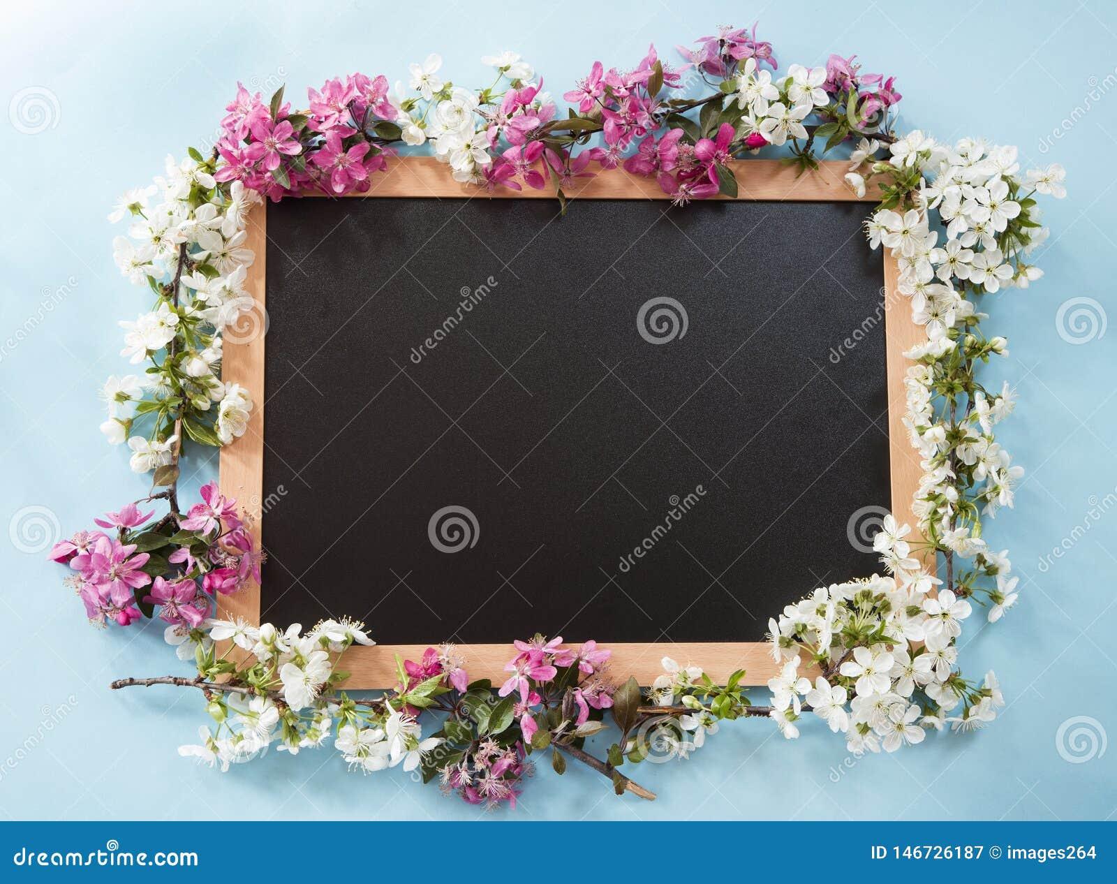 Tableau noir avec les fleurs de ressort