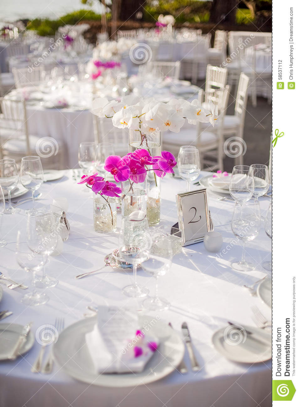 Table Setup For Outdoor Event Stock Photo - Image of event, decor ...