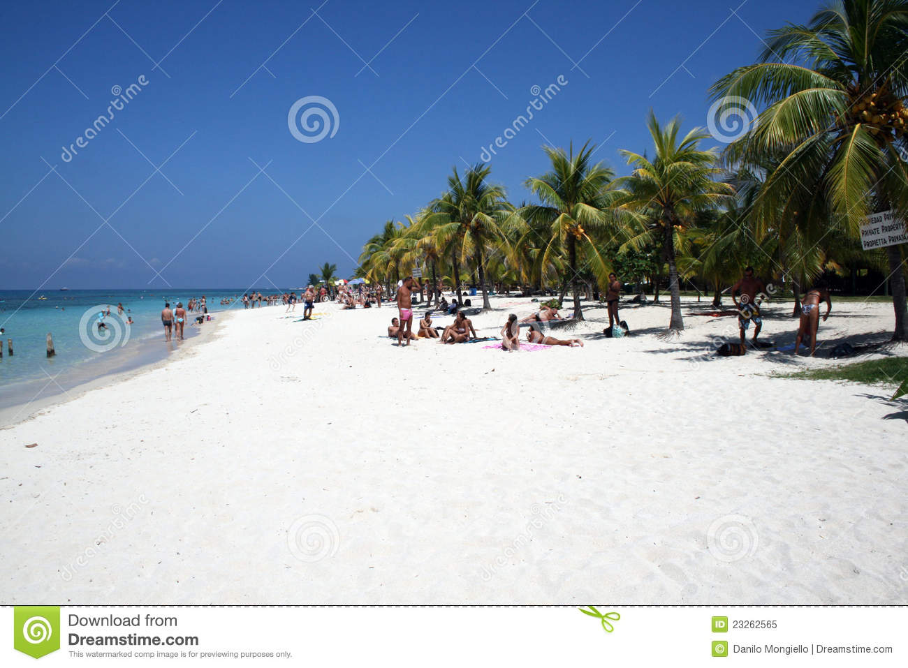 Royalty Free Stock Image Z Ocean Hotel South Beach Image28628286 in addition Selliner seebruecke furthermore Stock Illustration Illustration Happy Sunny Summer Day Beach Stock Vector Hammock Island Bright Sun Palm Trees Flat Image71805830 further Royalty Free Stock Photo Tabyana Beach Image23262565 also Atlantis Palm Dubai. on palm beach style architecture